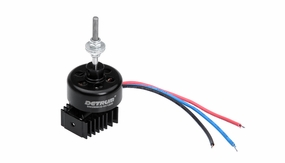 Dynam Outrunner Brushless Motor (1200kv) for Dynam Focus, Sky Trainer, I can Fly, Super J3 piper Cub
