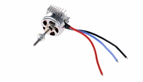 Dynam Outrunner Brushless Motor (1350kv) for Dynam Focus, Sky Trainer, I can Fly, Super J3 piper Cub 60P-CSN010-BM2810-KV1300
