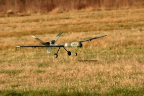 "Electric UAV RQ-1 Predator 63"" by Backyard Flyer"