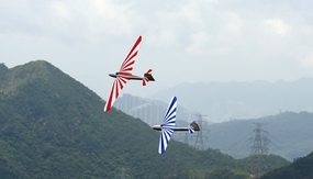 Flying Dream RC Glider Kits