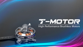 High Performance Brushless T-Motor AT2202 2300KV for Airplane 02P-Motor-605-AT2202-KV2300