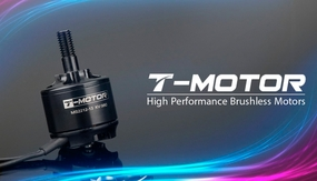 High Performance Brushless T-Motor MS2212 980kv for Copter 02P-Motor-374-MS2212-kv980