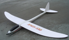 Sky Hawk EP 3-Channel Radio Remote Controlled Airplane RTF 3389_SkyHawk