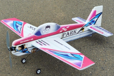 Tech One RC Hobby Park 1100 EPP 3D Plane Almost Ready to Fly RC Remote Control Radio