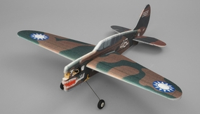 Tech One Hobby RC Plane P40 Aerobatic 3D Warbird 4 Channel Kit