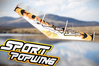 Tech One RC 4 Channel Sportwing EPP ARF Version Plane + T2208 motor + ESC + servo + propeller (Yellow) RC Remote Control Radio