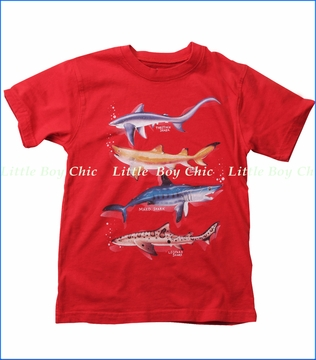 Wes & Willy, Shark Breeds Tee in Bright Red