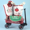 Baby Christmas Gifts Wagon