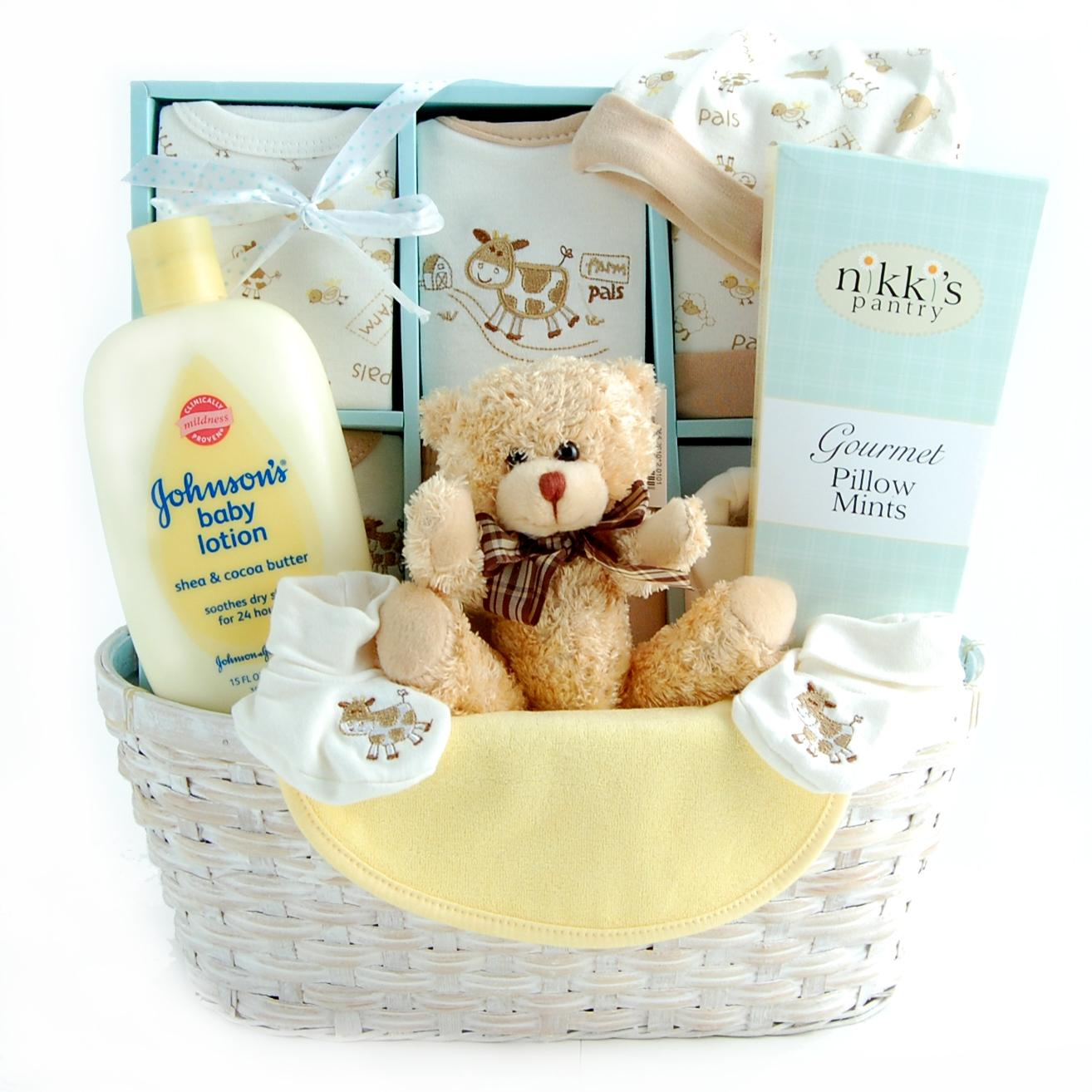 Welcome Baby Gift Basket Ideas Gifts