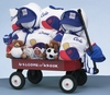 Sports Themed Wagon For Twin Boys (Can Be Personalized)