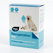 VIYO Recuperation DOG (3 x 150 ml)