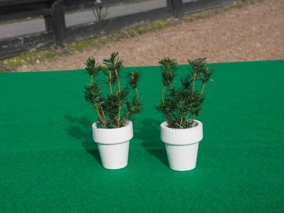 2 White Flowerpots with green brush