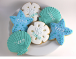 Nautical Cookies, Starfish, Sand Dollar, Seahsell