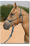 Professional's Choice Rope Halter with Lead