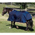 Shires StormCheeta 200g Turnout Rug