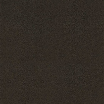 "American Olean Decorum Distinct Black 24"" x 24"" Polished"