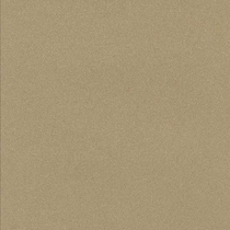 "American Olean Decorum Proper Taupe 24"" x 24"" Polished"