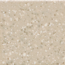 "American Olean Unglazed Colorbody Mosaics Willow Speckled 2"" x 2"" Mosaic"