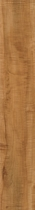 "Armstrong Natural Personality Plank Honey Pine 6"" x 36"""