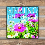 Winter Pallet Promotions