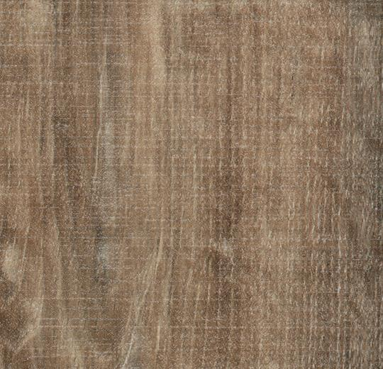 Forbo Allura Lvt Wood Natural Raw Timber 5 1 2 Quot X 39 3 8