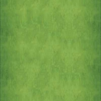 "Interceramic Aquarelle Light Green 10"" x 20"""