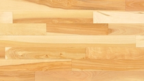 Mirage Natural UV Yellow Birch Traditional Engineered Semi-Gloss
