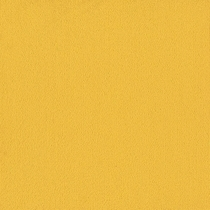 Patcraft Color Choice Citrus Carpet