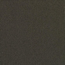 Patcraft Color Choice Ebony Carpet