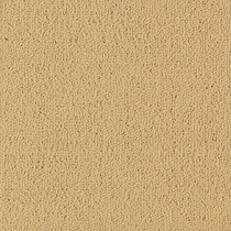 Patcraft Color Choice Flax Carpet