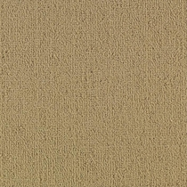 Patcraft Color Choice Gilded Carpet