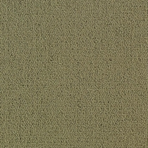 Patcraft Color Choice Glass Carpet
