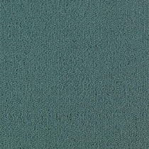 Patcraft Color Choice Nordic Carpet
