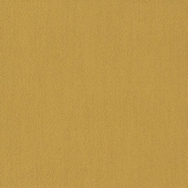 Patcraft Color Choice Ochre Carpet