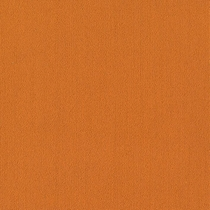 Patcraft Color Choice Orange Carpet