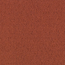 Patcraft Color Choice Russet Carpet