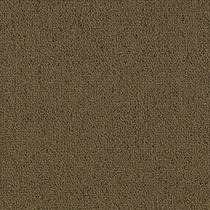 Patcraft Color Choice Suede Carpet