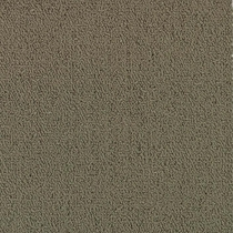 Patcraft Color Choice Taupe Carpet