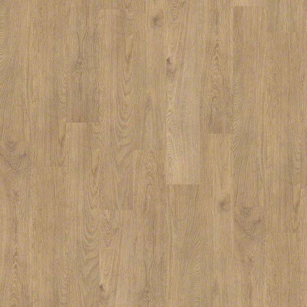 Shaw 5th Amp Main Thoroughly Modern 20 Mil Technology 6 X 36 Luxury Vinyl Plank 5m207 247