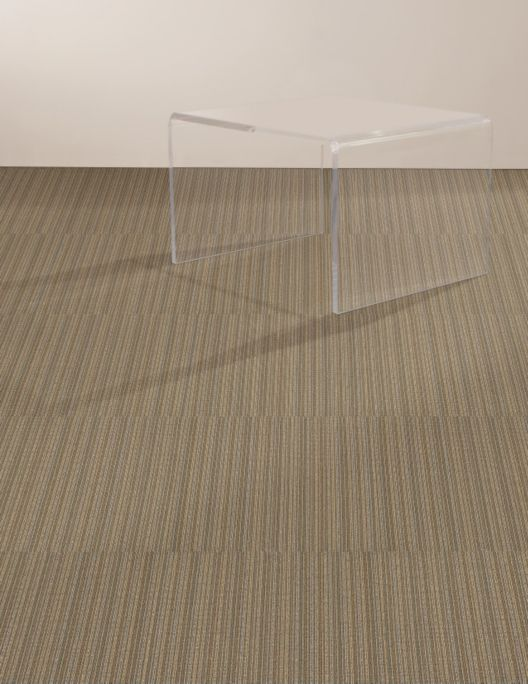 Shaw Contract Group Commercial Clearview Clear Carpet Tile