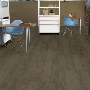 Shaw Contract Group No Rules Captivate Carpet Tile
