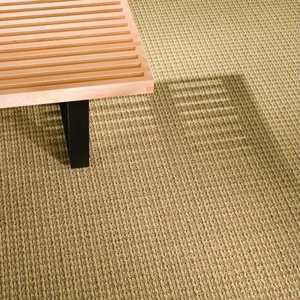 Shaw Contract Group Turn Key Equal Broadloom Carpet 5a066