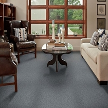 Tuftex One Sweet Day Carpet