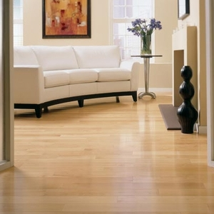 """Somerset Engineered Specialty Strip Maple Natural 3 1/4"""""""