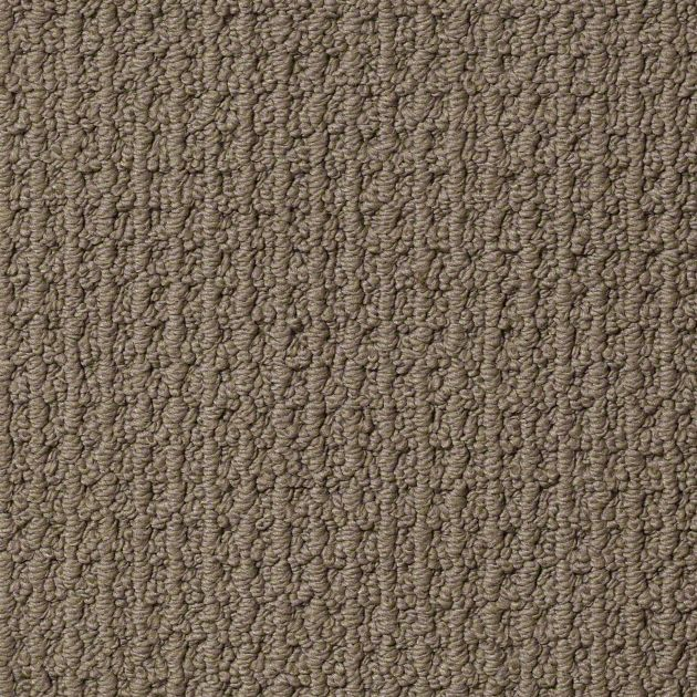 Tuftex Sail On Shady Taupe Carpet Z6907 00576