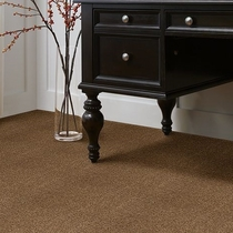 Tuftex Sterling Heights Carpet