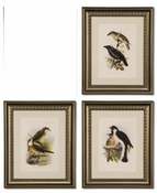 Birds on Branches Prints - 70% Off