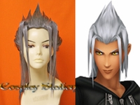 Kingdom Hearts Young Xehanort Cosplay Wig