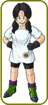 Videl Custom Made Cosplay Costume: High Quality!