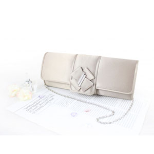 Edgy and Elegant Evening Purse Champagne